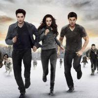 Twilight chapitre 5: Revelation - Critique